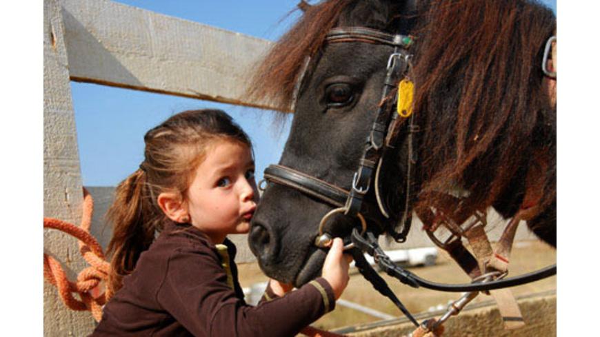 Ponyhof Erlebnistag