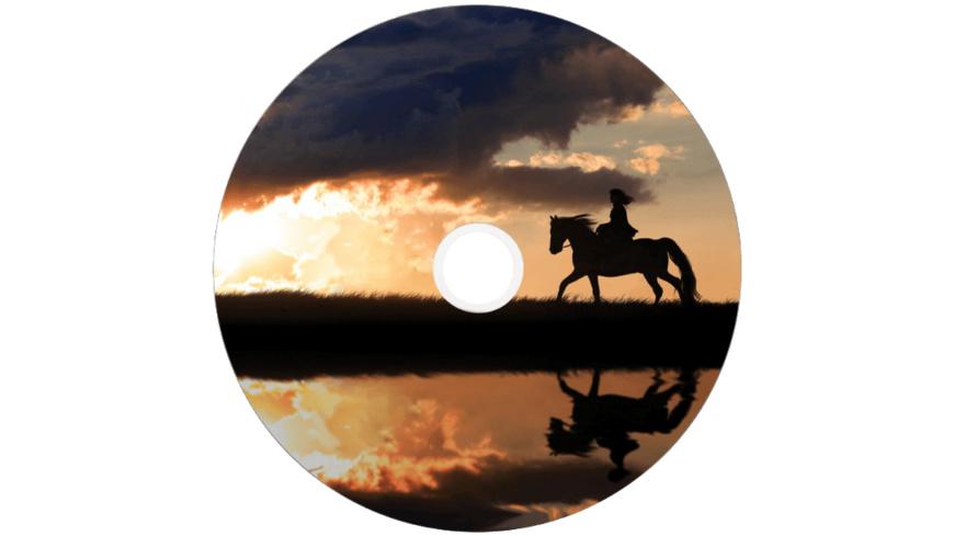 VERBATIM 43667 Printable Bedruckbar DVD+R DL 8X, Rohling