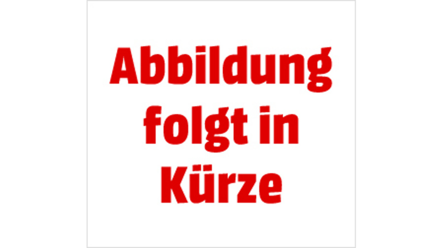 Egon Schiele  - (DVD)