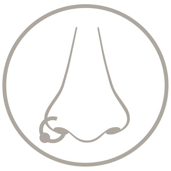 Piercing - Nosy Gold
