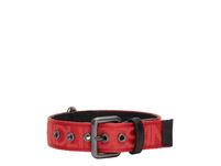 Halsband für Hunde - Hundehalsband