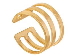 Ring - Golden Lines