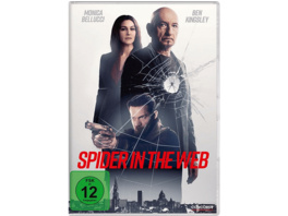 Spider in the Web - (DVD)