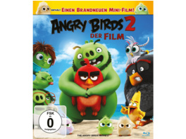 Angry Birds 2 - Der Film - (Blu-ray)