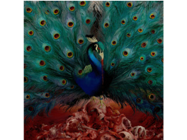 Opeth - Sorceress - (CD)