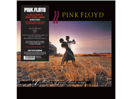 Pink Floyd - A Collection Of Great Dance Songs - (Vinyl)