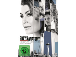 Grey's Anatomy - 14. Staffel - (DVD)