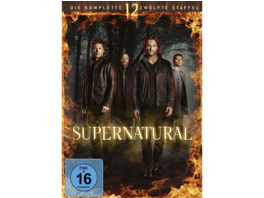 SUPERNATURAL - 12. STAFFEL - (DVD)